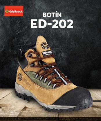 BOTIN-ED-202-2